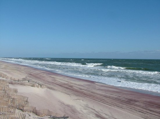 Fire Island National Seashore : the Beach