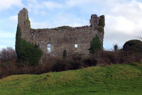 St Johns House B&B: Rinn Duin Castle
