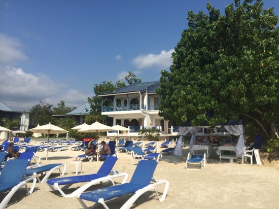 On the beach!! - Picture of Negril Tree House Resort ...