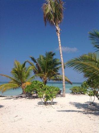 Fun Island Resort: spiaggia verso la laguna