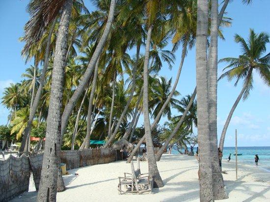 Stingray Beach Inn: the beach