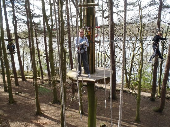Go Ape at Rivington, Bolton: On the stand