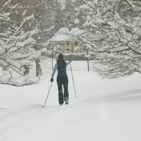 Canyon Ranch in Lenox: cross country skiing