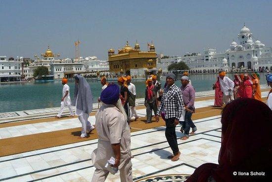 Goldener Tempel (Hari Mandir): Colourful and hot