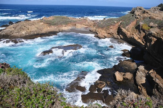 Point Lobos State Reserve: Emerald colored cove on the South Shoreline