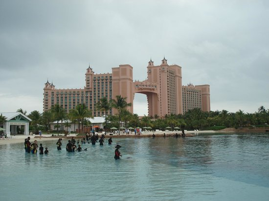 The Cove Atlantis, Autograph Collection : dolphin cay