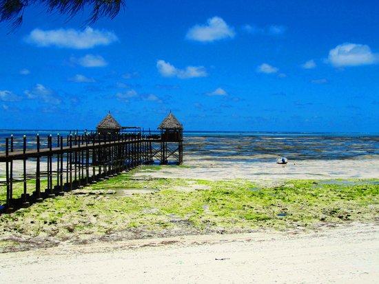 Spice Island Hotel & Resort Sansibar: View to the Jetty Bar