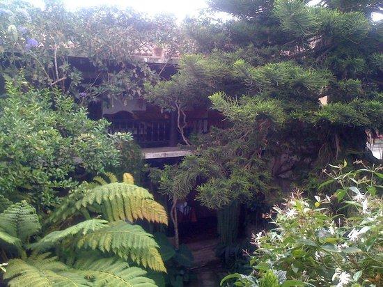 Meson Panza Verde: Courtyard