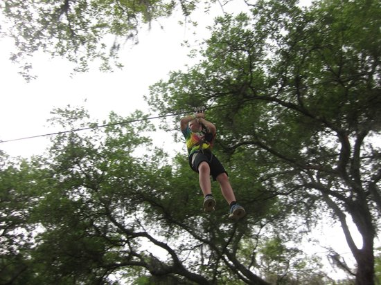 TreeUmph! Adventure Course : 7 year old loving the kids course zip line!