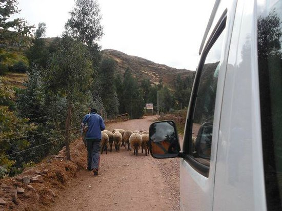 Tipón: Traffic jam on the road up to the site.