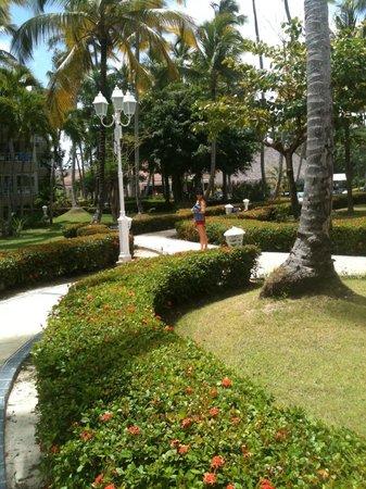 Vista Sol Punta Cana : un petit morceau de jardin