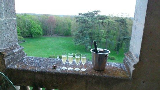 Chateau de la Bourdaisiere : champagne! vue de la chambre Agnès Sorel