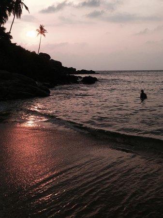 The Leela Kovalam Beach: The beach at sunset