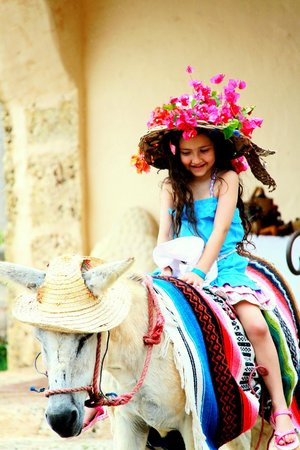 Altos de Chavon: donkey ride