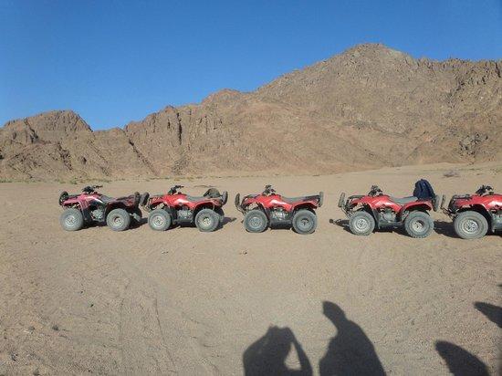 Sharm Grand Plaza: Quad Biking