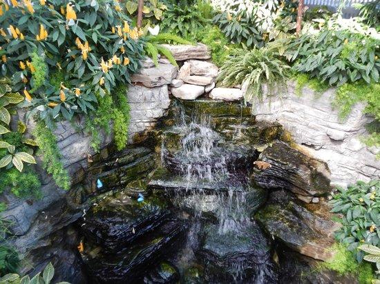 Montreal Botanical Gardens: 1