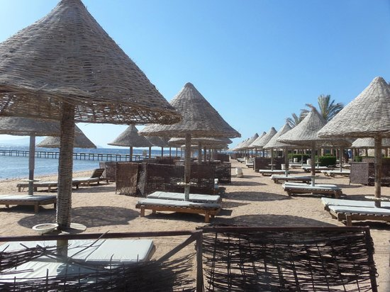 Sharm Grand Plaza: Beach - Very gritty - no soft sand