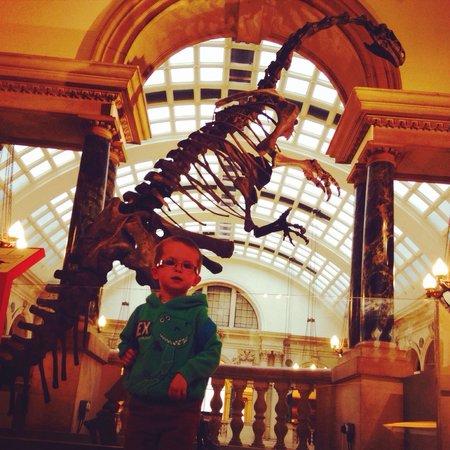 Bristol Museum & Art Gallery: Dinosaur adventure :-)