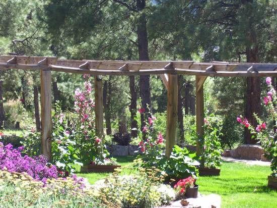 Canyon Crest Lodge: Garden