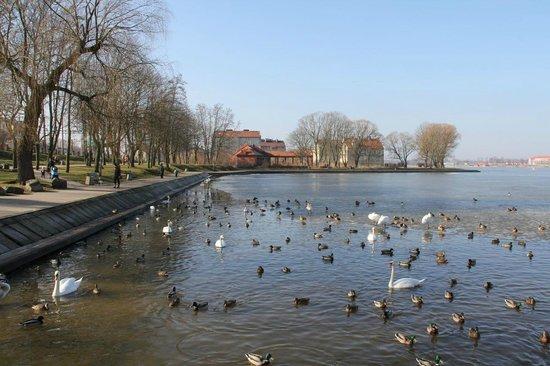 Hotel Platinum: Ostróda - Jezioro Drwęckie