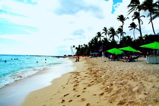 Public beach of Dominicus at Bayahibe: Bayahibe beach