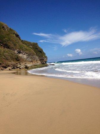 Royal Isabela: Beach