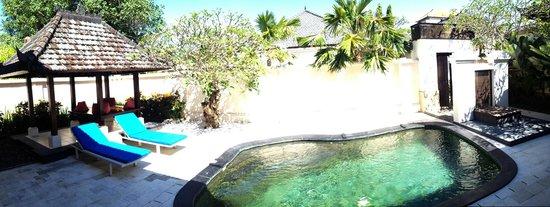 The Tukad Villa : Private Pool