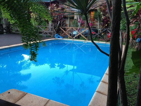 Jasy Hotel : Jasy pool surrounded by tropical plants