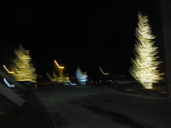 Fairmont Hot Springs Resort: Lighted trees, Spring Break