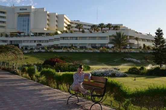 Hilton Hurghada Plaza: Зеленый Хилтон