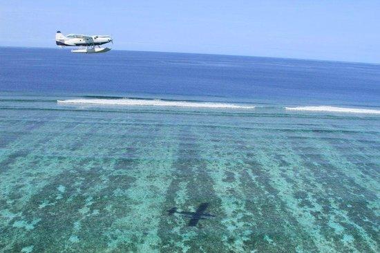 Flight deals pacific islands