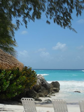 Bougainvillea Barbados: Beach view