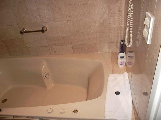 Aspen Towers Hotel: Banheiro