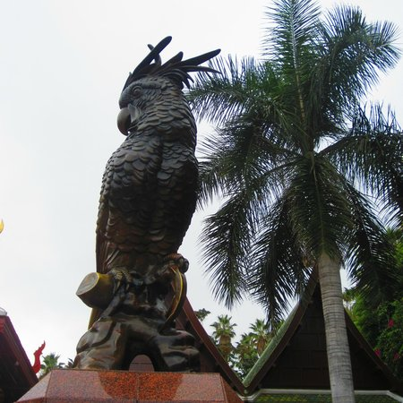 Loro Parque: papuga :)