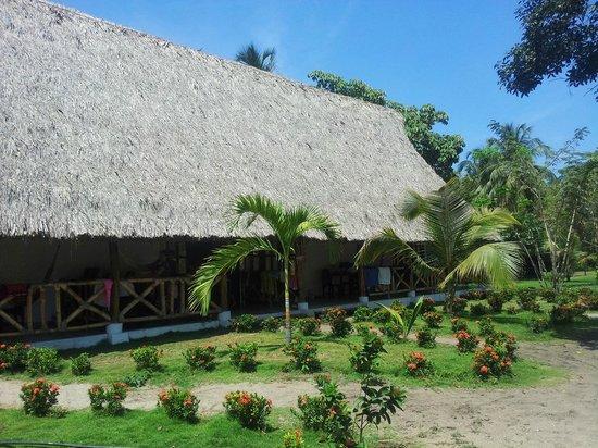 The Dreamer Hostel On The Beach: Dreamer hostel