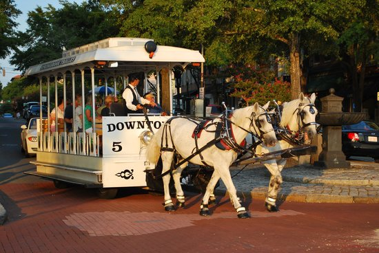 Historic District: Happy Horses