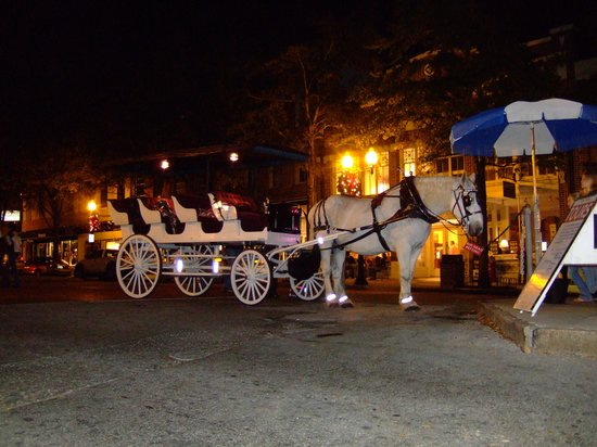 An Evening Ride During the Christmas Season Through the Historic District