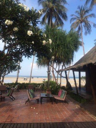 Phi Phi Island Village Beach Resort : Bar