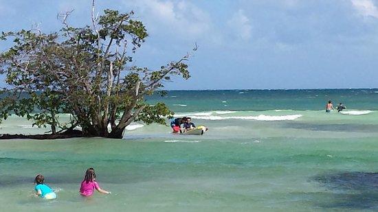 Hacienda Tres Ríos: Enjoying the beach area