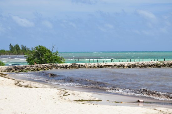 Hacienda Tres Rios: Enjoying the beach view