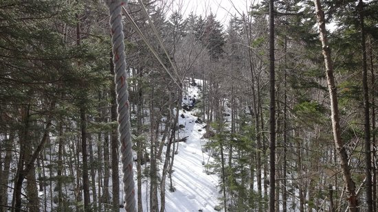 Bretton Woods Canopy Tour: zip4