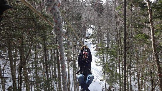 Bretton Woods Canopy Tour: zip3