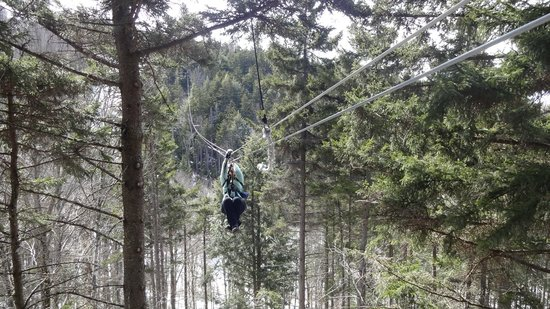 Bretton Woods Canopy Tour: zipping