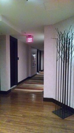 Hutton Hotel : Hallway