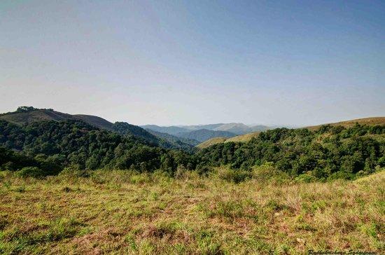 Thekkady - Woods n Spice, A Sterling Holidays Resort: A view at Thekkadi