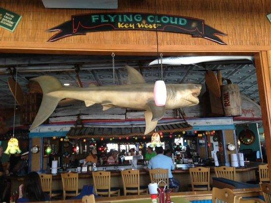 Noisy Oyster Seafood Restaurant Funky Decor All Over Bar