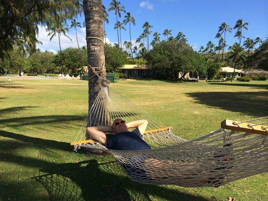 Waimea Plantation Cottages : Lounging on the property