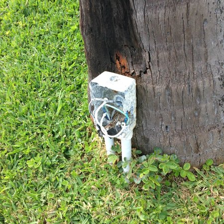 Grand Lucayan, Bahamas: Open electrical boxes to entertain your children