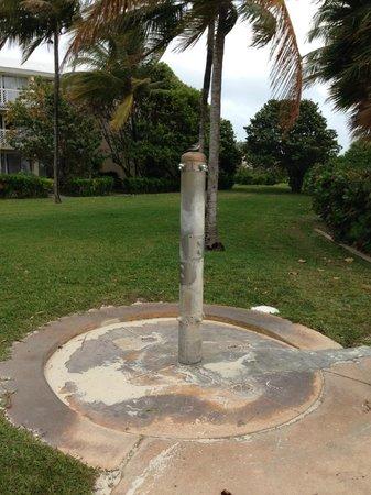 Grand Lucayan, Bahamas: Nice bird perch...the water doesn't flow....