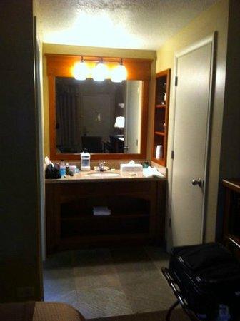 Best Western Driftwood Inn : Vanity